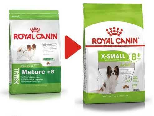 adult-xsmall-8-royal-canin