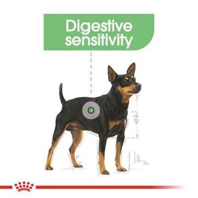 mini-digestive-royal-canin-cane
