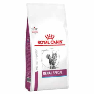 royal-canin-renal-special-gatto