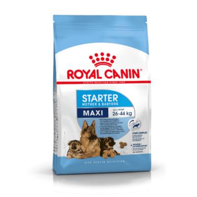 royal_canin_maxi_starter_mother_and_babydog