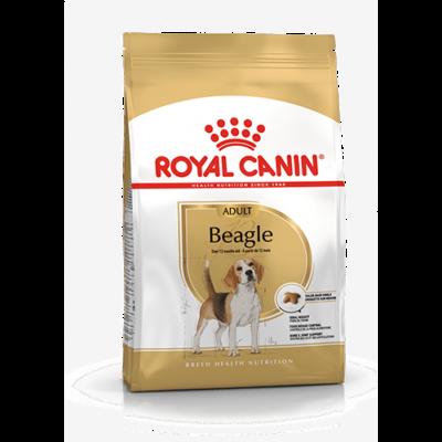 Royal_Canin_Beagle