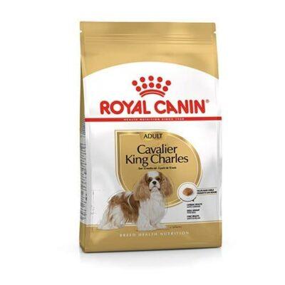 Royal Canin Cavalier King