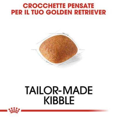 crocchette_golden_retriever