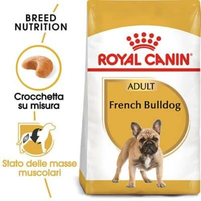 french_bulldog_prezzo