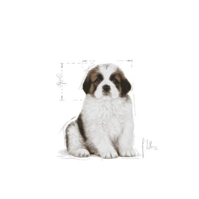 giant_puppy