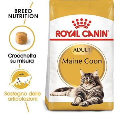 maine_coons