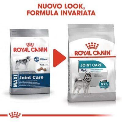 maxi_royal_canin
