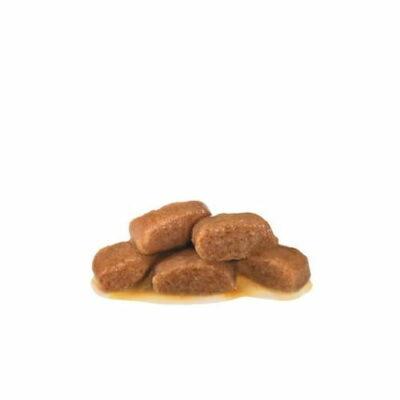 royal-canin-gastro-intestinal-moderate-calorie-gatto-bocconcini
