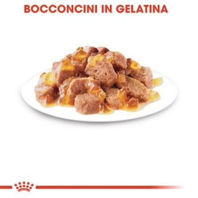 royal-canin-sterilised-bocconi-gelatina-gatto