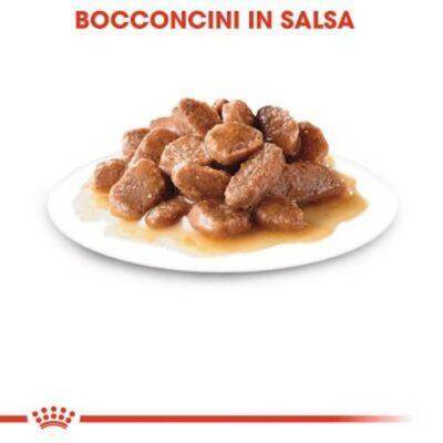 royal-canin-sterilised-bocconi-salsa-gatto