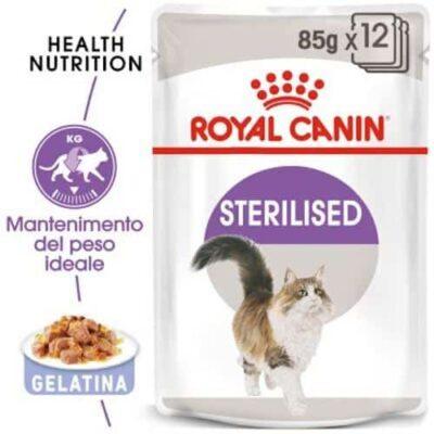 royal-canin-sterilised-grafica-gelatina-gatto