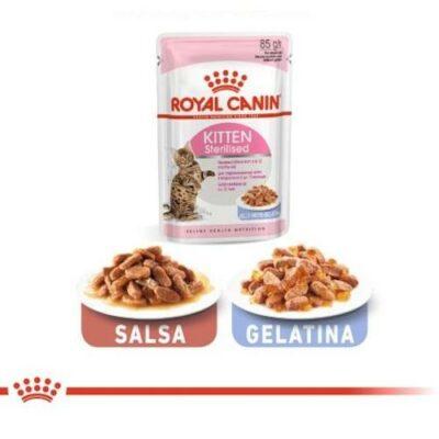 royal-canin-sterilised-jelly-salsa