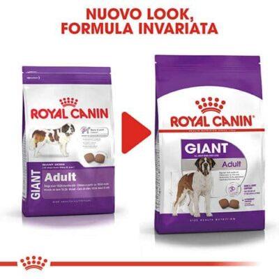 royal_canin_adulto