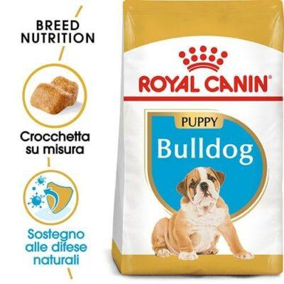 royal_canin_bulldog_junior