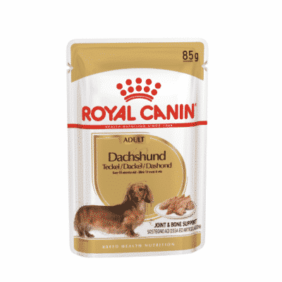 royal_canin_bustine_bassotto