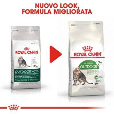 royal_canin_cat