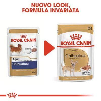 royal_canin_chihuahua_food