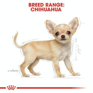 royal_canin_chihuahua_puppy
