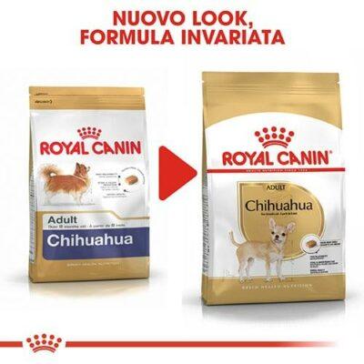 royal canin chihuahua nuovo