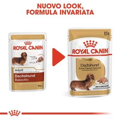 royal_canin_dachshund_food
