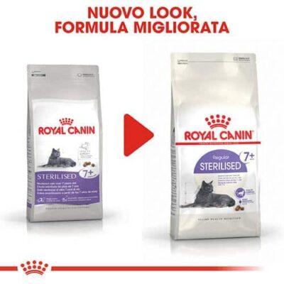 royal_canin_gatti