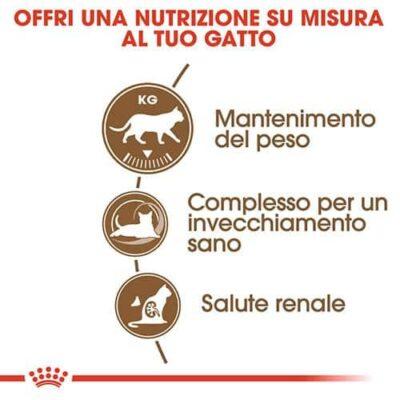 royal_canin_gatti_sterilizzati