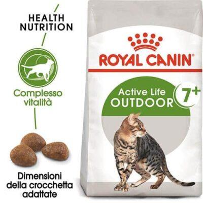 royal_canin_gattini