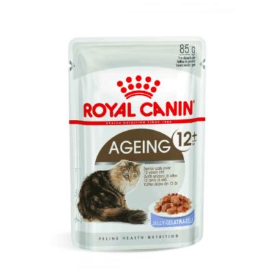 royal_canin_gatto_ageing_12_gelatina