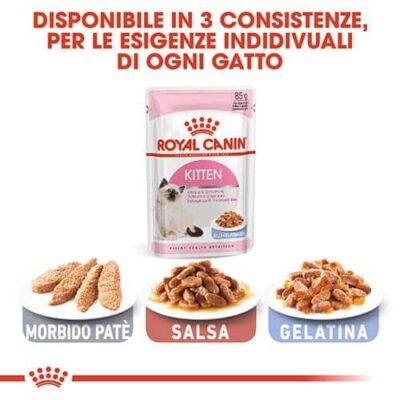 royal_canin_kitten_food