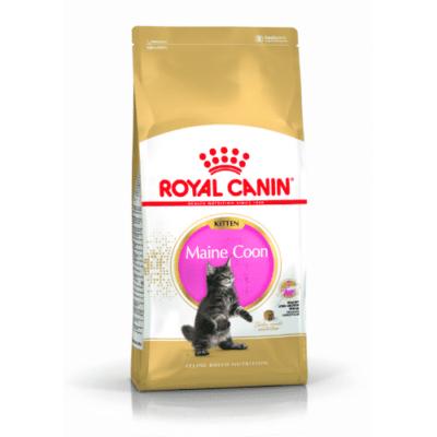 royal_canin_kitten_maine_coon