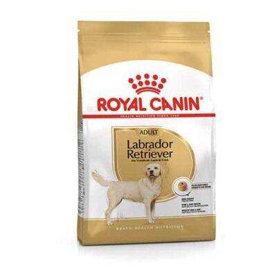 royal_canin_labrador_adult