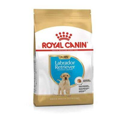 royal_canin_labrador_puppy