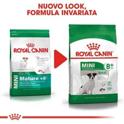 royal_canin_mini_adulto