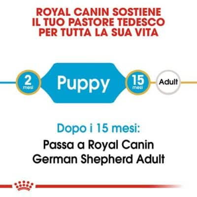 royal_canin_pastore_tedesco_junior