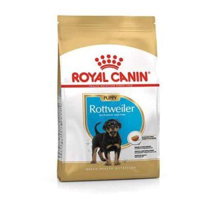 royal_canin_rottweiler_puppy