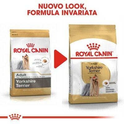 royal_canin_yorkshire