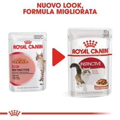 royal_canine