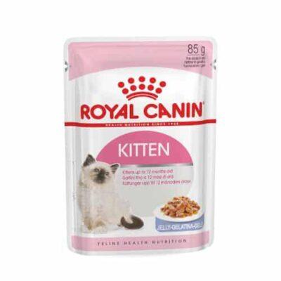 royal-canin-kitten-jelly