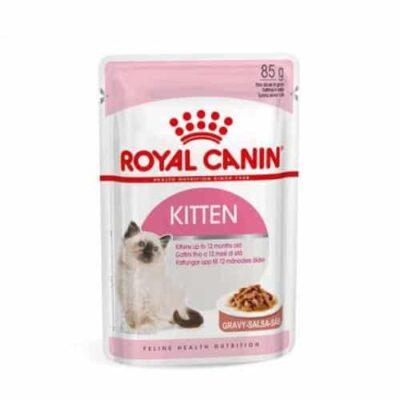 royal-canin-kitten-salsa